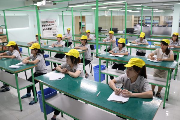 IEV教育4